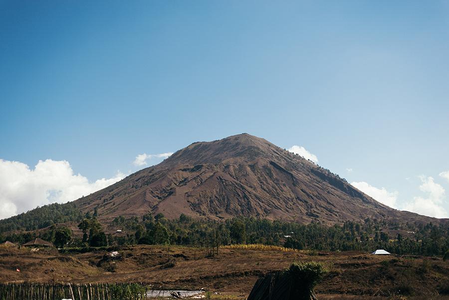 Bali-783