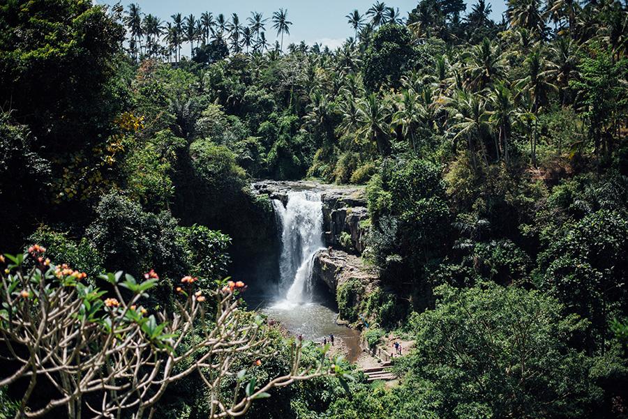Bali-960
