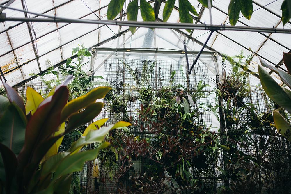 jardines-botanicos-30