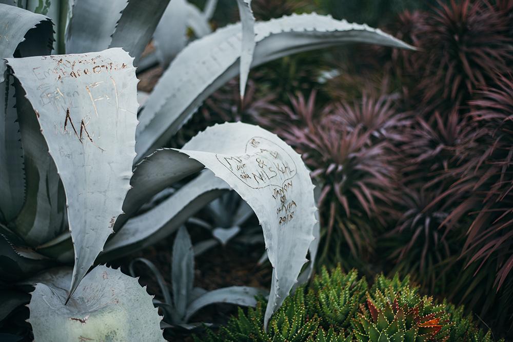jardines-botanicos-37