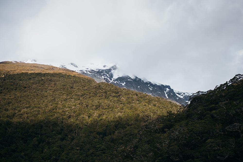 NZ13-267