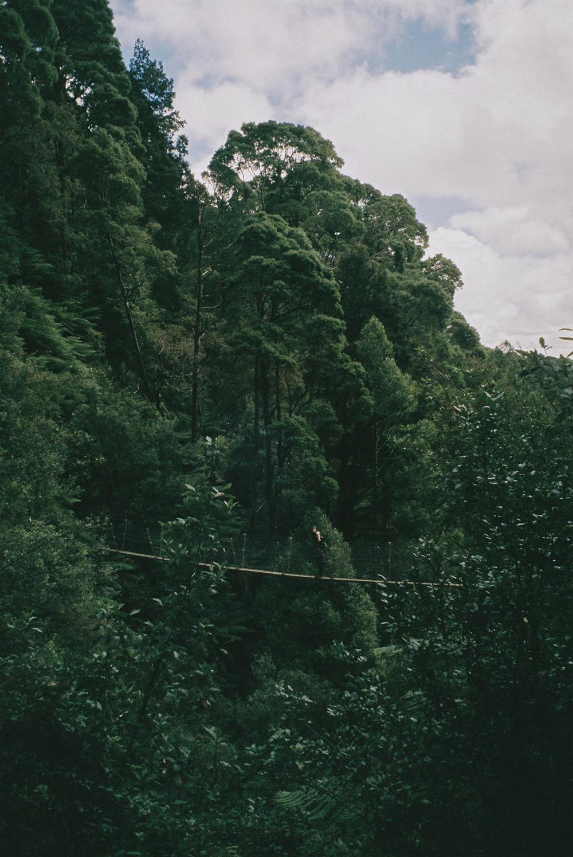 marzo film-8