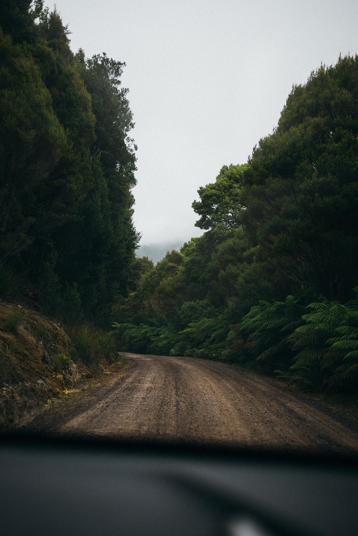 6.Tasmania-28